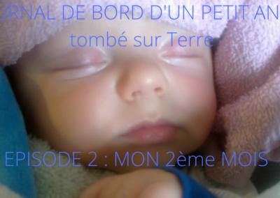 JOURNAL DE BORD D'UN PETIT ANGE tombé sur Terre -2-