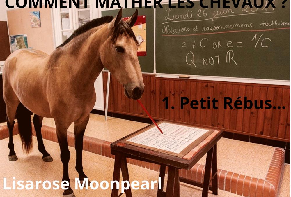 COMMENT MATHER LES CHEVAUX ? Petit Rébus…