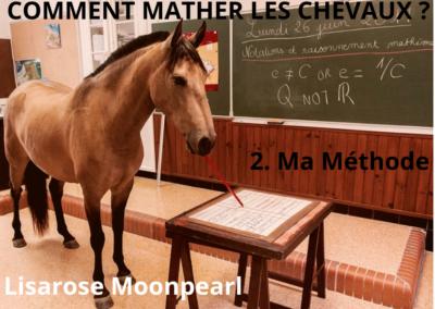 COMMENT MATHER LES CHEVAUX ? Ma méthode…