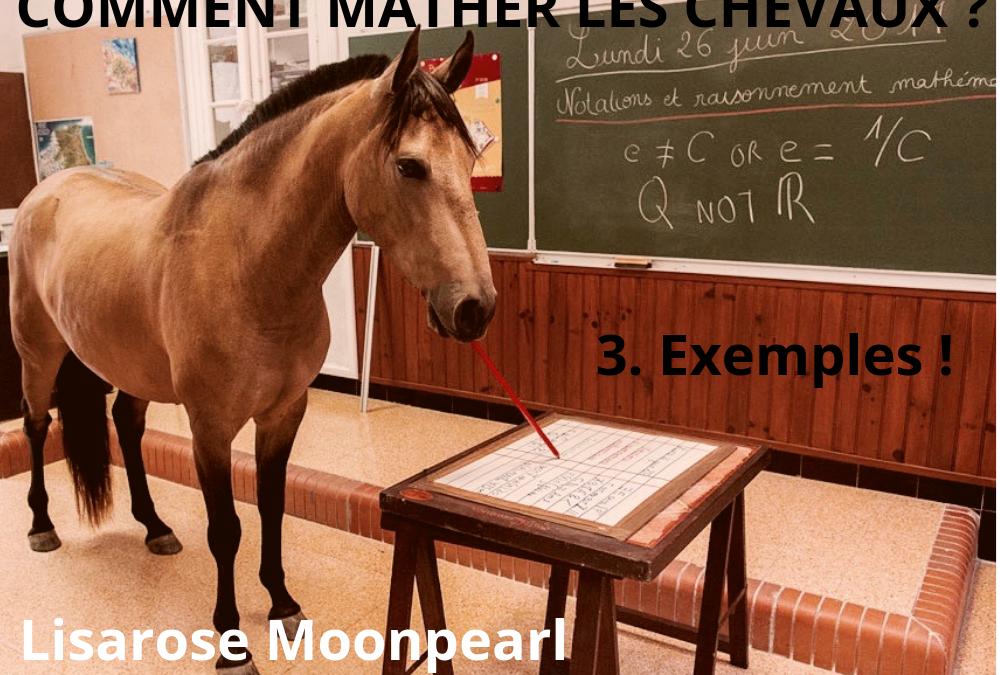 COMMENT MATHER LES CHEVAUX ? Exemples !