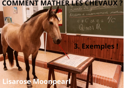 COMMENT MATHER LES CHEVAUX ? Exemples !