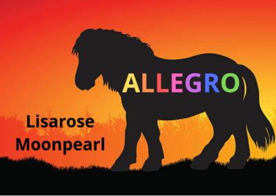 ALLEGRO (illustré)